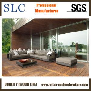 Meubles de jardin en rotin/Outdoor Canapé-lit/canapé attrayant (SC-B8915)