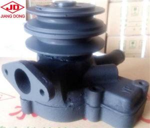 Pompa ad acqua del motore diesel di Jiangdong Jd495