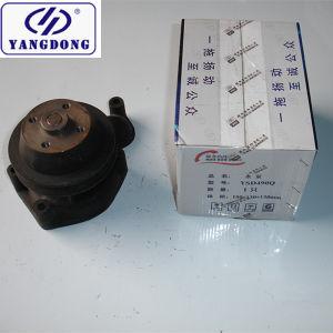 Yangdong 엔진 Ysd490 수도 펌프