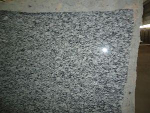 床、カウンタートップのための波の白い花こう岩