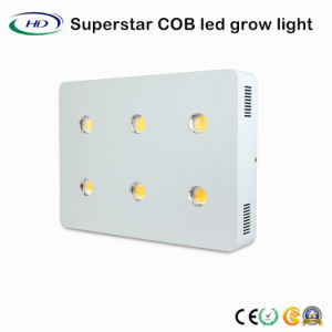 Superstar 6*200W LED de la Mazorca crece la luz con chips CREE