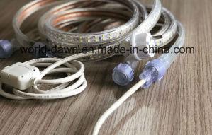 220V impermeabilizzano l'indicatore luminoso maschio della corda del fermaglio LED