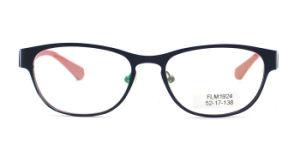 Optische Frames van de Acetaat van Eyeshape van de Kat van Eyewear Mazzucchelli van de fabriek de Professionele Met de hand gemaakte (FLM1924)