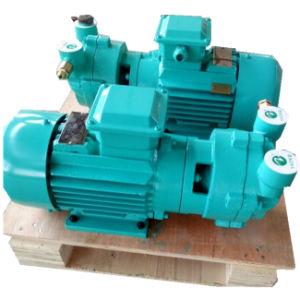 Medical Industry를 위한 Yhzkb Sk 0.15A Liquid 또는 Water Ring Vacuum Pump