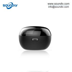 Twsの本当の無線ステレオのスポーツの小型Bluetoothのヘッドホーンの耳のイヤホーン
