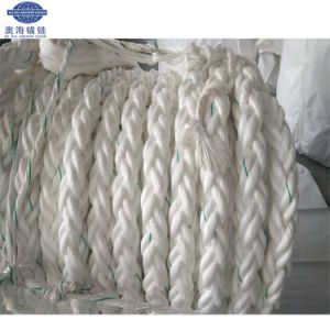 Seil-Polypropylen pp. Fbr-China-Powerdan, das Seil verankert