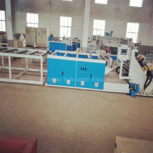 El ahorro de energía Pet/PLA extrusionadora de husillo doble máquina hoja
