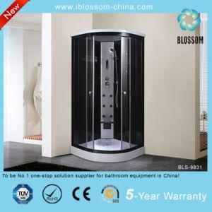 Hangzhou nueva llegada de 2014 Sala de ducha de esquina (BLS-9831)