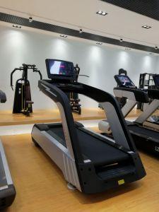공장 가격을%s 가진 클럽을%s 최신 판매 체조 스포츠 장비 디딜방아