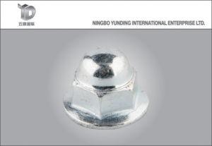 La Chine de haute qualité de l'écrou de la rondelle avec l'écrou à embase hexagonale de cap