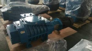 Type de traitement thermique sous vide les racines de la soufflante Déplacement 300L/s