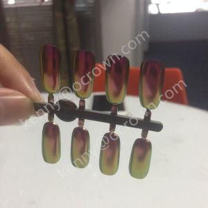 Espejo brillante cromado en polvo de pigmento de manicura de uñas Camaleón Glitter