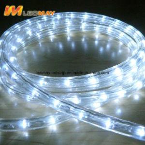 Resistente al agua y luz LED2 Cuerda Venta directa, con CE RoHS
