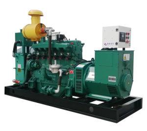 Usine de la biomasse utilisée La combustion du bois d'électricité pour la vente du générateur