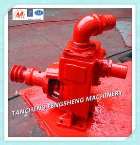 Ns-Serien-Selbstgrundieren-Wasser-Pumpe für Agiculture
