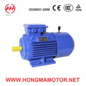 Motor de la C.C./motor de inducción electromágnetico trifásico del freno con 0.75kw/4poles