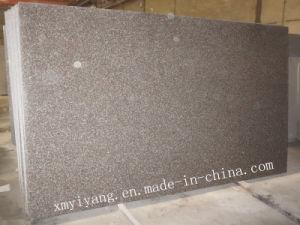 G664/Bainbrook de Bruine Plak van het Graniet voor Countertop en Bevloering (yy-VBBS)