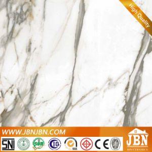 De Opgepoetste Inkjet Tegels van Carrara Porselein (JM6121D2)