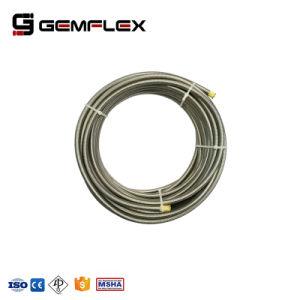 Tubo flessibile idraulico R14 di SAE 100 con il tubo di PTFE