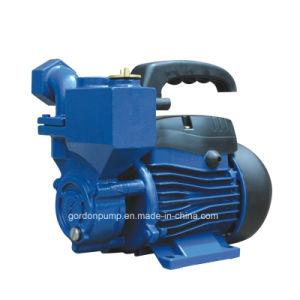 Cable de cobre interior Garden Jet Booster de presión de bomba de agua con el impulsor de latón