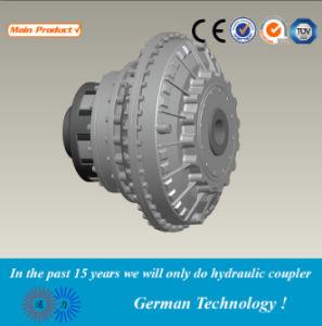 Yox konstante Drehzahl Hudraulic flüssige Koppelung BerufsManufactor (YOX)