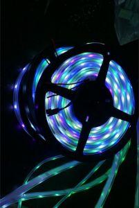 Digitahi RGB 4in 1 striscia di 5050SMD Ws2812b LED