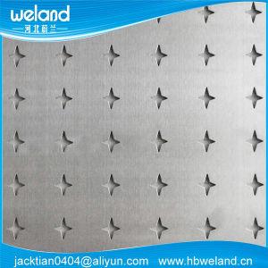 Acier inoxydable/aluminium Plaques en métal perforé