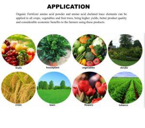 Het organische Chelaat van het Aminozuur van het Magnesium voor Organische Meststof