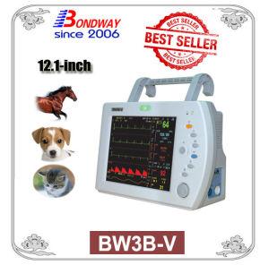 수의 애완 동물 참을성 있는 모니터, (BW3B-V) Multi-Parameter 생활력 징후 모니터, 휴대용 생활력 징후 수의사 모니터