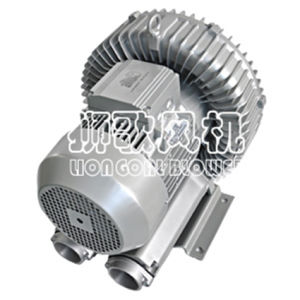 Trocknende Trockner-Vakuumluftpumpe mit hohem Luftstrom und Druck