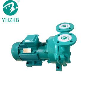 /Air-Pumpe der flüssigen Vakuumpumpe des Ring-2BV5121