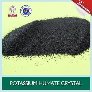 Het nieuwe Glanzende Kristal van Humate van het Kalium van het Type