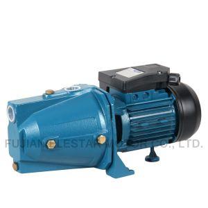 제트기 100L 0.75kw 시리즈 관개를 위한 Self-Priming 제트기 수도 펌프