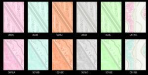 De ceramische Muur betegelt 200X300mm
