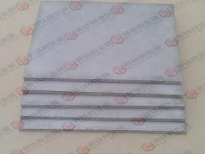 Gr2 Micropore Plaat van het Blad van de Filter van het Poeder de Titanium Gesinterde