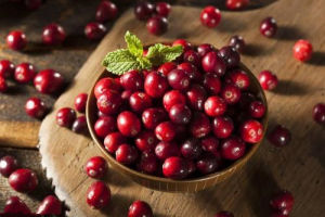OEM de Essentie van het Fruit van de Amerikaanse veenbes van het Vermageringsdieet van de Fabrikant Softgel van Natuurlijke voeding