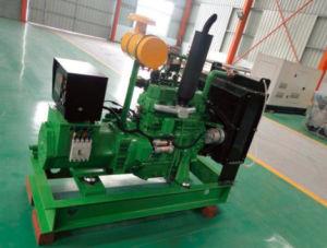 30kw biogas Genset/esportazione del motore del gruppo elettrogeno del gas 4105 in Russia