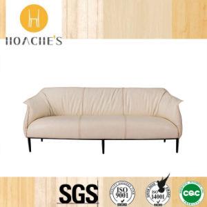 Diseño moderno clásico Sofá de la Oficina de buena calidad (HT-825F)