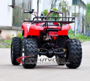 Китай сделал горячим продавая высоким качеством 60V электрическое ATV с различными цветами