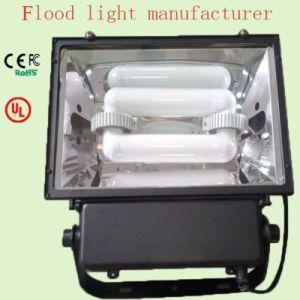 Luce di inondazione economizzatrice d'energia di induzione