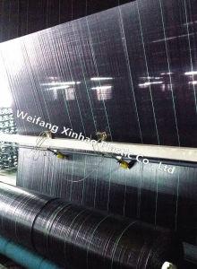 Paisaje de anti-UV tela con Heavy Duty de la fábrica