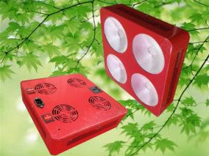 l'alto potere LED della PANNOCCHIA 300W coltiva l'indicatore luminoso