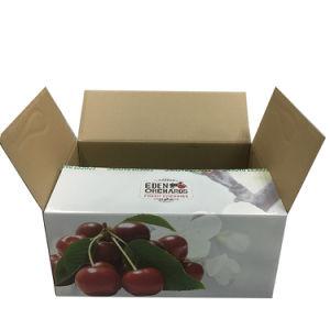Impressão personalizada na caixa de embalagem para transporte de frutos pesados