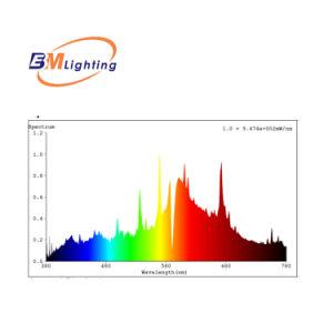 Alta eficiencia de 315W CMH Hydroponic iluminación balasto electrónico con un fuerte equipo de I+D.