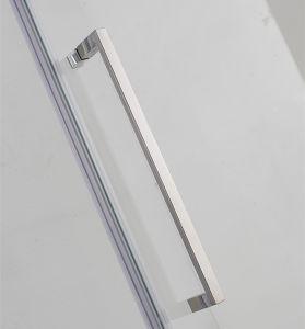 Cabina de ducha con pivote grande de la puerta de Rango ajustable