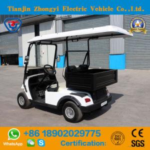 Zhongyi Mini 2 Lugares carrinho de golfe eléctrico com caçamba traseira