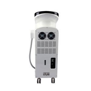 De professionele Machine van het Pigment van het Vlekkenmiddel van het Haar van de Laser van Elight IPL Gezichts