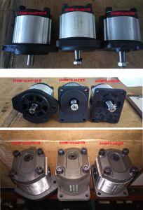 Motor de engranajes de bomba hidráulica para el motor rascador con cojinete exterior