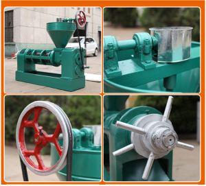 20 de Koud geperste Machine van de Olie van de Kopra T/D