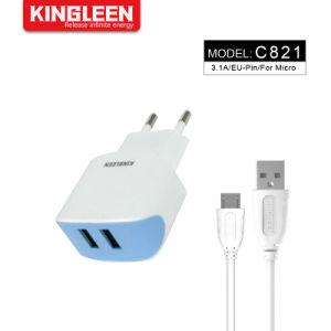 EU-Stecker-Ausgangswand-Arbeitsweg-Aufladeeinheit Mikro-USB-Kabel-Installationssatz, Doppel-Aufladeeinheits-Ziegelstein USB-3.1A mit androiden Mikroaufladennetzkabeln